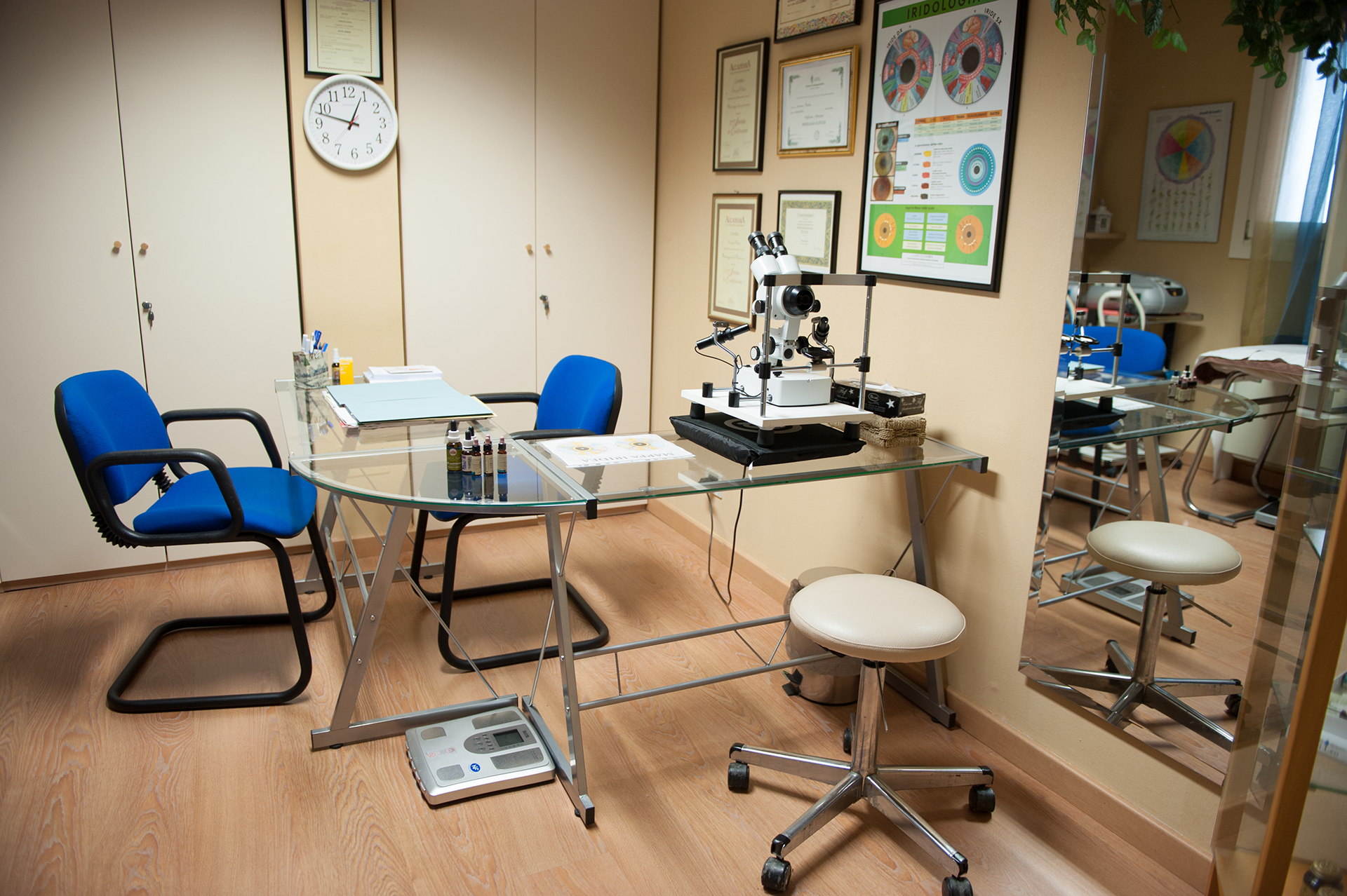 iridologia, naturopatia, analisi iridologica
