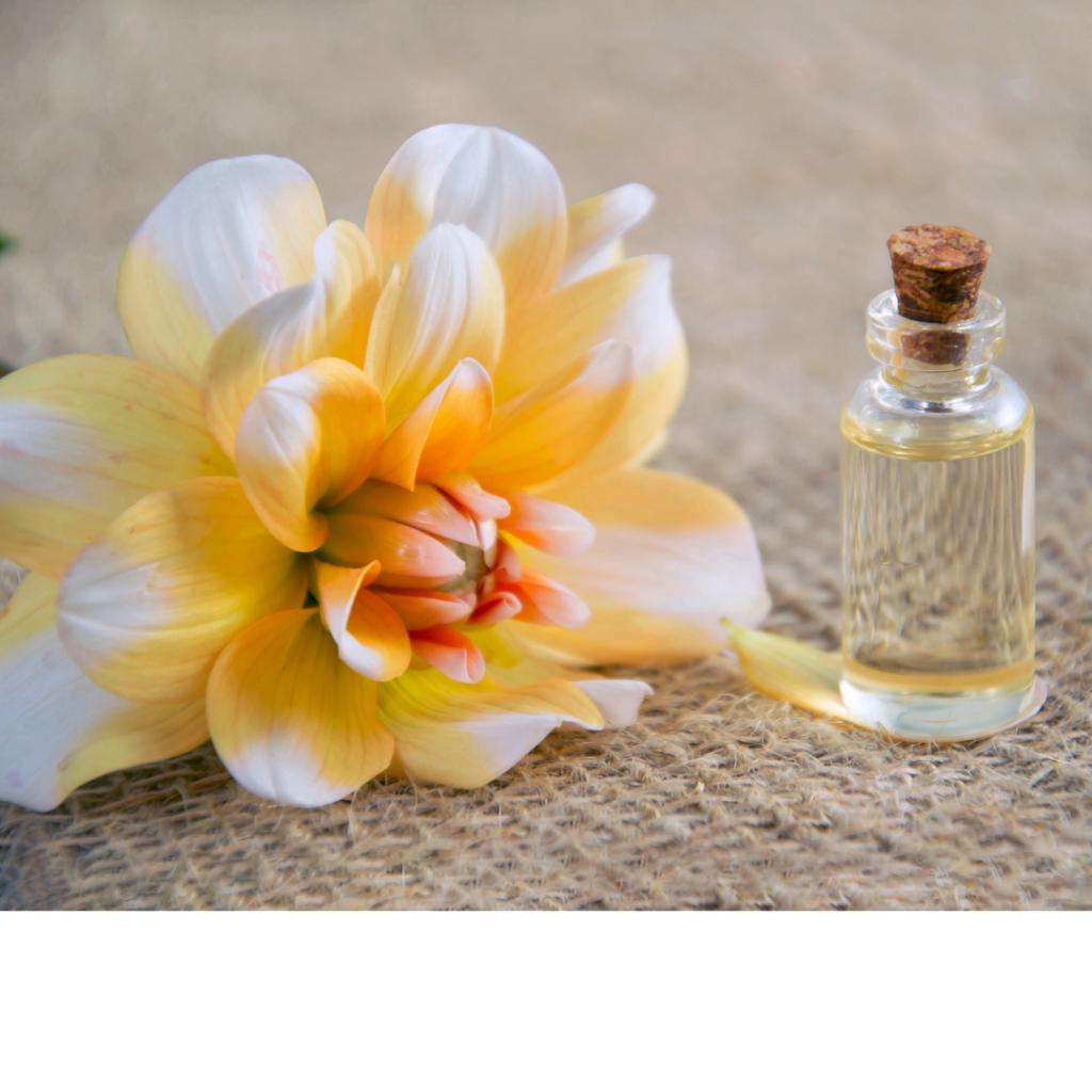 massaggio fiori di bach conegliano
